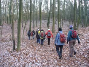 Foto: Wandergruppe im Fläming