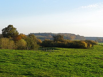 Foto: Landschaft bei Wiesenburg