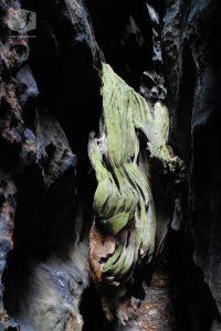 Foto Holz, Schlucht, Felsen